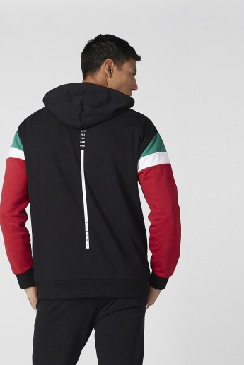 Hooded Jacket with Striped Long Sleeves and Zip Closure