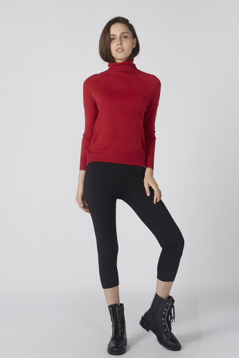 Textured Sweater with High Neck and Raglan Sleeves