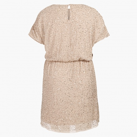 Sequined Dress with Elasticised Waist